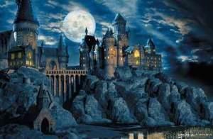 Hogwarts-Castle-hogwarts-7330015-410-268