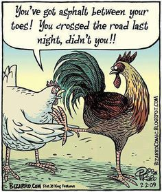 why did the chicken cross the road3