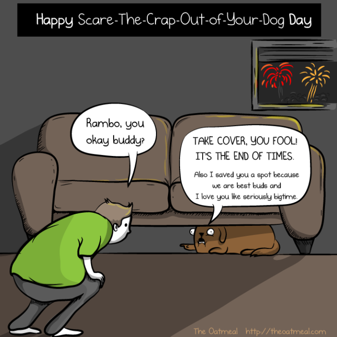 Fireworks-And-Dogs 2