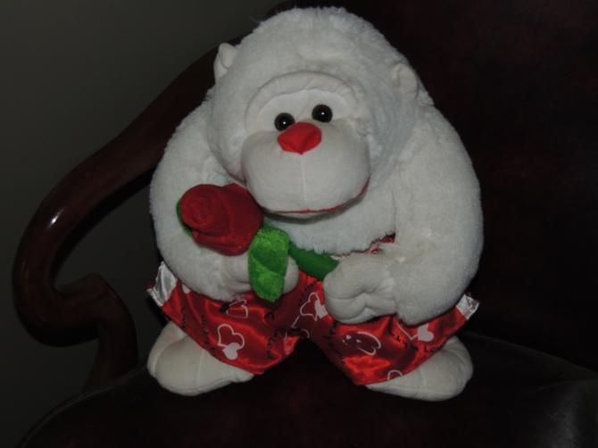Valentines Monkey 2.jpg