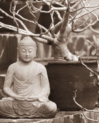 buddah with flower pot black and white.jpg