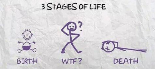 3-stages-of-life-death-birth-wtf-3-stages-of-6620261