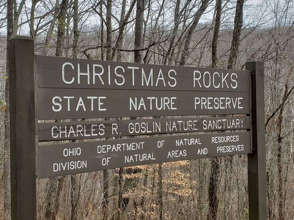 christmas rocks new
