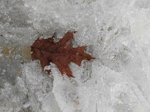 gefrorener-see