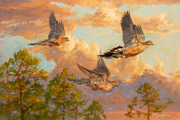 "Ryan Kirby Art — ""Mourning Glory"" Original Dove Painting by Ryan Kirby"